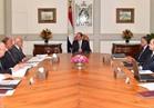 السيسي يطالب الحكومة بتنفيذ اتفاقيات جولته الآسيوية بالصين وفيتنام