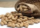 الصادرات والواردات:100% ارتفاعا بصادرات الفول السوداني و84% بالثوم خلال 6 شهور