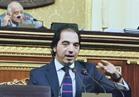 فيديو.. برلماني: ندعم مشروعات الشباب بالتنسيق مع الحكومة