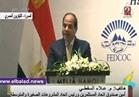 فيديو| اتحاد المستثمرين: زيارة السيسي لفيتنام فرصة جيدة للترويج لمصر