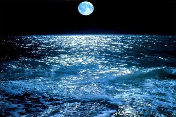 c701884870192 ماذا يحدث لو كان كوكب الأرض بدون قمر؟